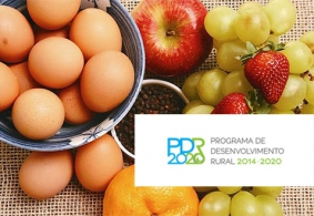 Candidaturas PDR 2020